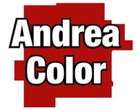 Andrea color paints